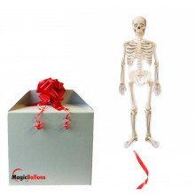 Mr Bones AirWalkers - folija balon v paketu