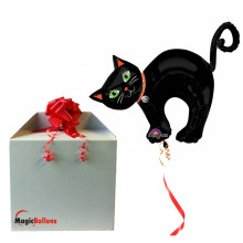 Halloween Cat - folija balon v paketu